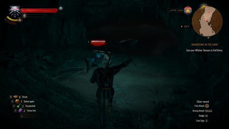 wandering in the dark - the witcher 3 quest walkthrough