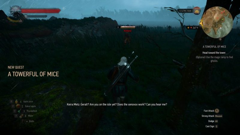 witcher 3 - a towerful of mice quest guide