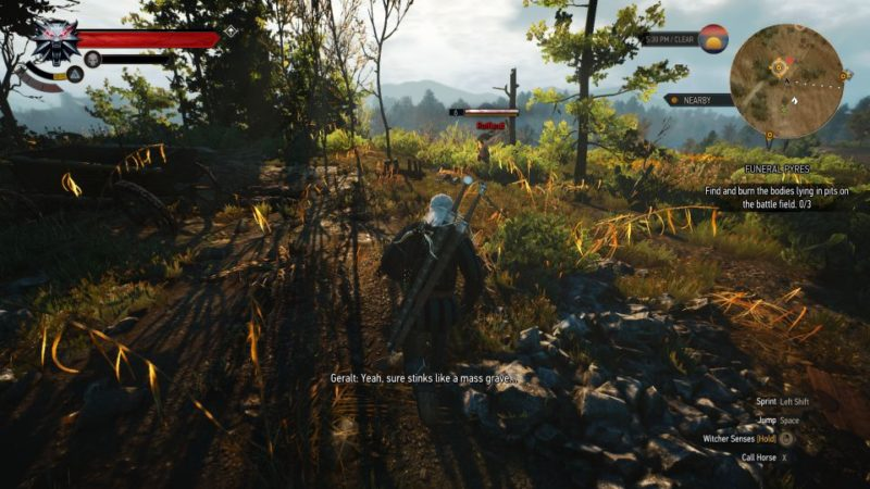 witcher 3 - funeral pyres kill the man or let him go