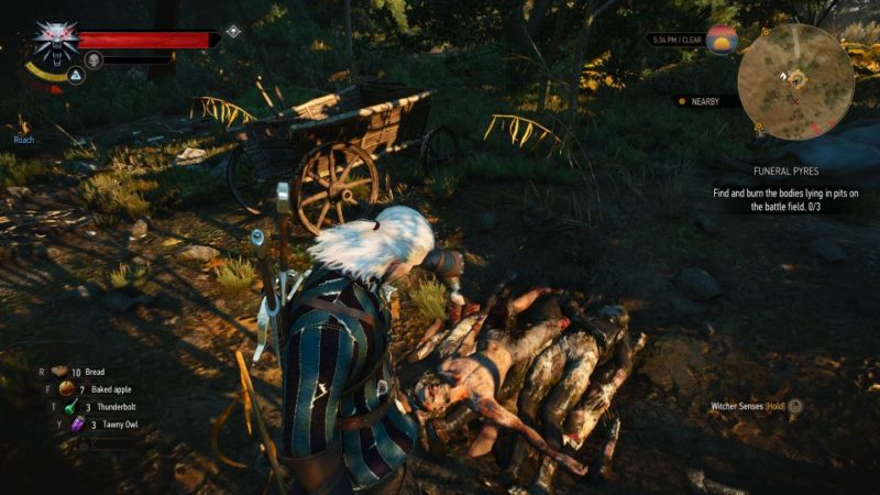 witcher 3 - funeral pyres quest