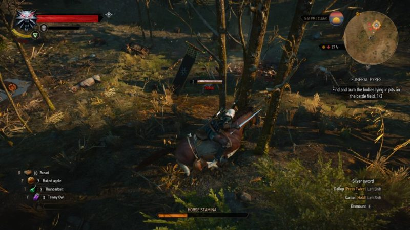 witcher 3 - funeral pyres quest guide