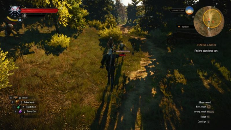 witcher 3 - hunting a witch mission guide