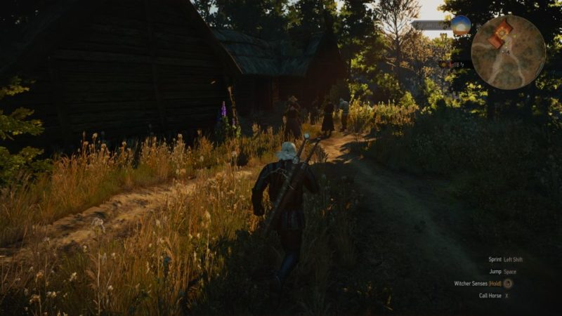witcher 3 - hunting a witch mission walkthrough