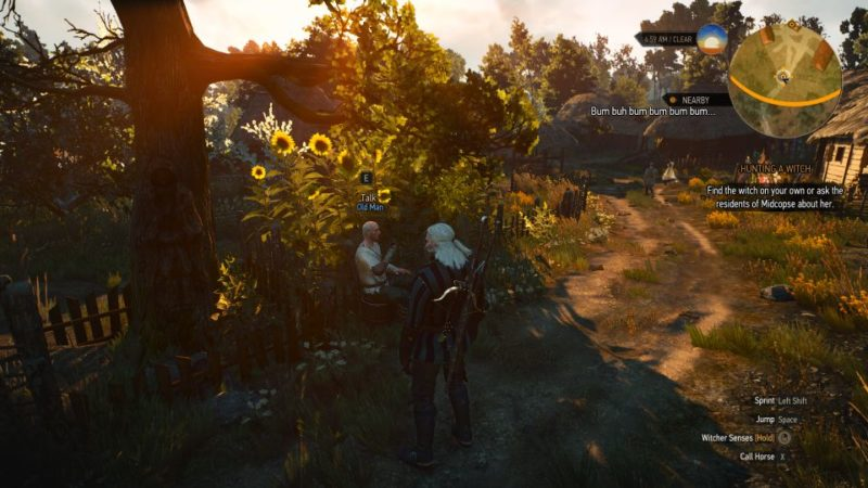 witcher 3 - hunting a witch quest