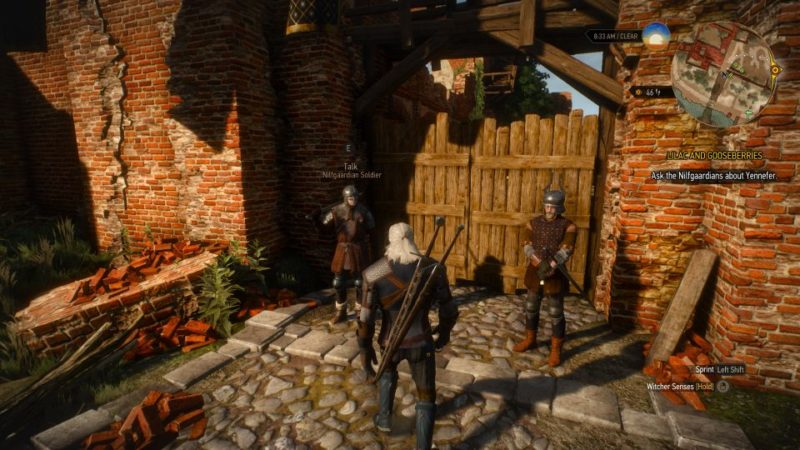 witcher 3 - lilac and gooseberies walkthrough