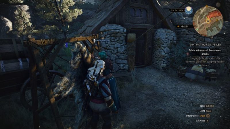witcher 3 - muire d'yaeblen quest