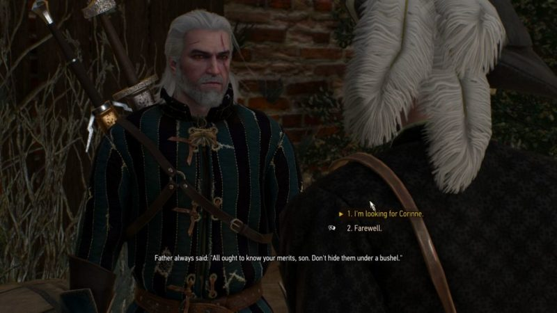 witcher 3 - novigrad dreaming guide and tips