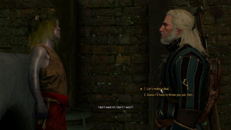 witcher 3 - novigrad dreaming wiki
