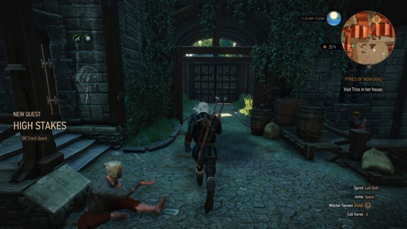 witcher 3 - pyres of novigrad quest