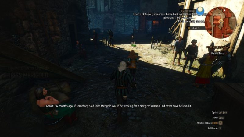 witcher 3 - pyres of novigrad tips