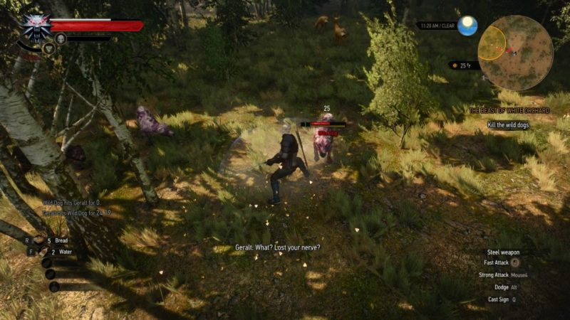 witcher 3 - the beast of white orchard mission
