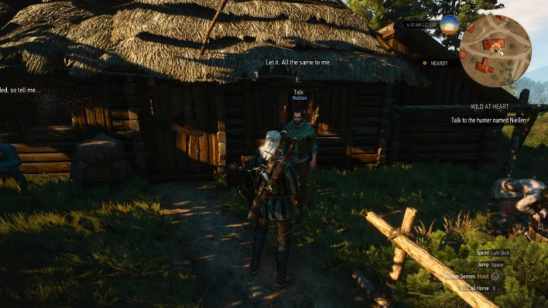 witcher 3 - wild at heart guide