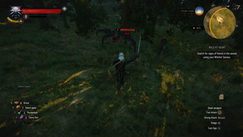 witcher 3 - wild at heart mission