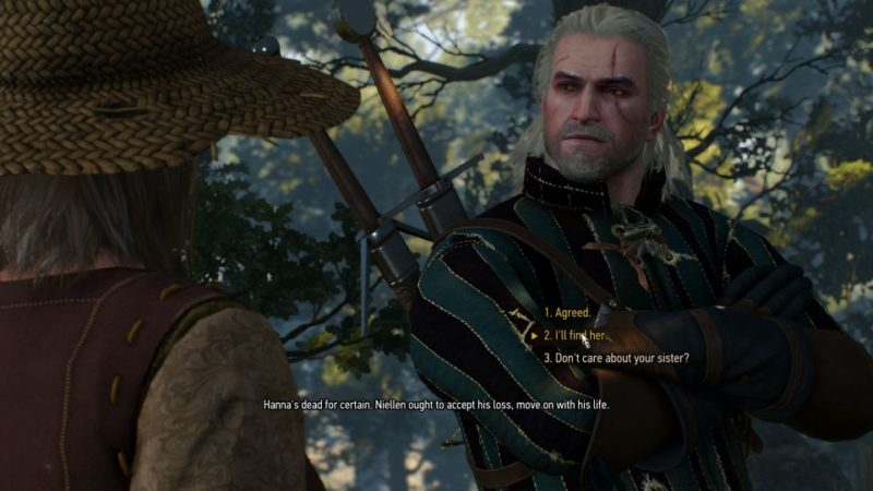 witcher 3 - wild at heart mission guide