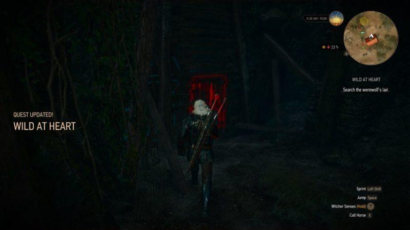 witcher 3 - wild at heart werewolf not spawning