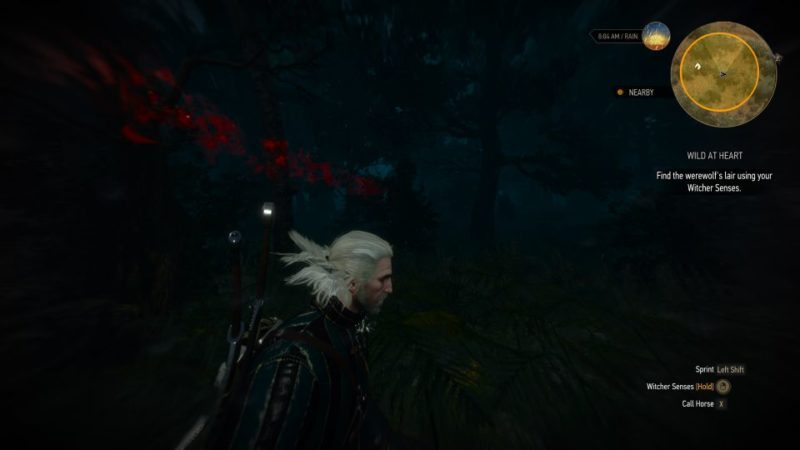 witcher 3 - wild at heart wiki and guide
