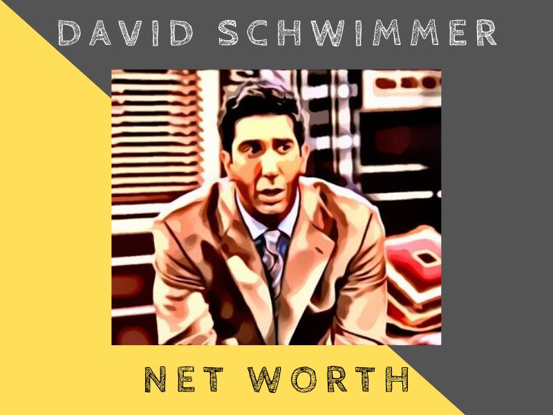 david schwimmer net worth