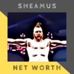 sheamus-net-worth