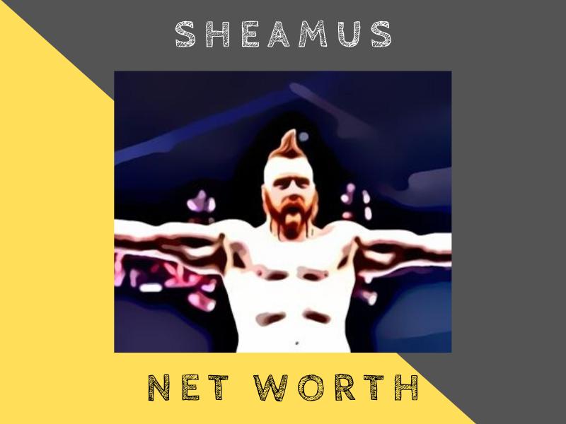 sheamus net worth