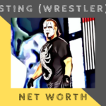 sting-net-worth