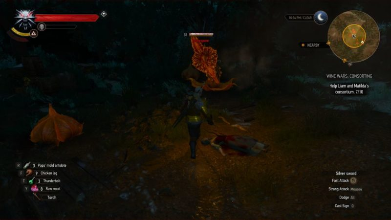 the witcher 3 - wine wars consorting quest