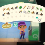 animal crossing new horizons - how to increase pocket storage