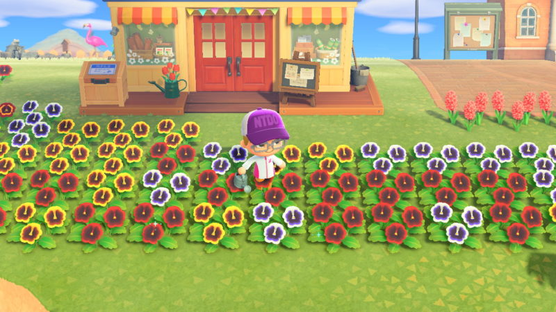 how to get more stars - animal crossing new horizons