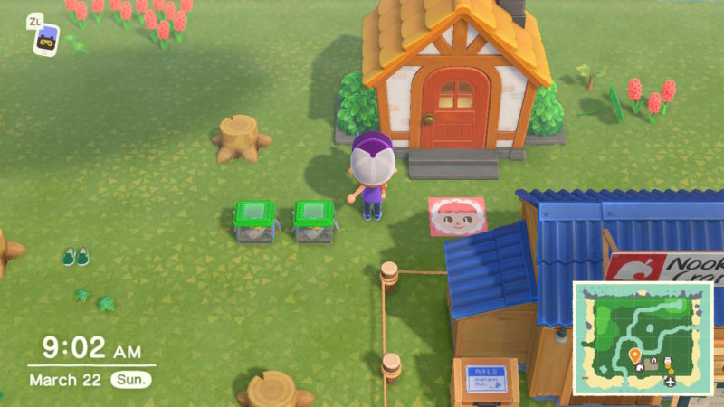 things to do every day animal crossing new horizons