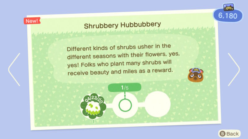what to do for nature day event - leif - buy shrubs